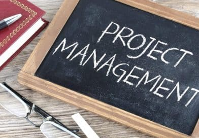Project Management The Basics for Success